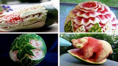 Fruit carving, watermelon carved, vegetable carving, sculture vegetali, intaglio frutta, pumpkin carving, amazing, Carving, Watermelon (Ingredient), carved, fruit carved, dragon, snake, FoodArt, CreativeIdeas, Creative Cooking, Artistic Cooking, Amazing Art, Kitchen Art, How To, Thai, Fruit, Art, Simple, Easy, Lesson, Beginners, Step By Step, Beautiful, Christmas, Flower, Teach, Training, Style, Decorating, Techniques, Tips, Fruit Carving, Learn, The Best, แกะสลักผลไม้, CUT A WATERMELON;