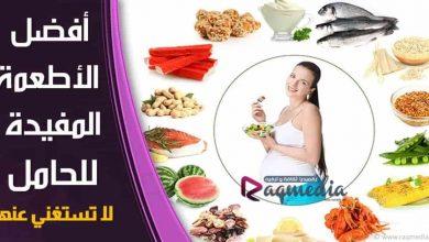 اطعمة مفيدة للحامل لا تستغني عنها, مرحلة الحمل والولادة, البيض سمك السلمون الفاصوليا البطاطا المكسرات الزبادي الخضراوات, المشروبات الواجب على المراة تناولها اثناء الحمل, الاطعمة المفيدة للحامل, الاطعمة الممنوعة للحامل, اهم المشروبات المفيدة للحامل, مشروبات للحامل فى الشهور الاولى, المشروبات المفيدة والضارة للحامل, مشروبات مفيدة للحامل, مشروبات مهمة للحامل, مشروبات ممنوعة للحامل, مشروبات الحامل في الشهر الاول, افضل المشروبات للحامل, اكل الحامل, فيتامينات للحامل
