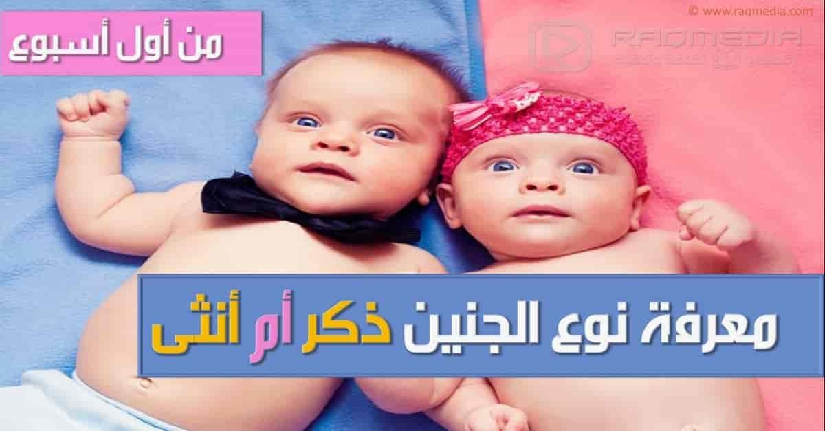 كيف تعرف نوع الجنين أثناء الحمل بدون سونار
