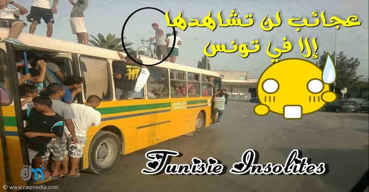 عجائب لن تشاهدها إلا في تونس